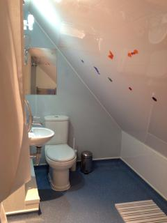 Wet room. Restricted headroom due to sloping ceiling