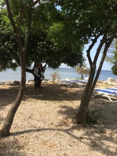 The beach - Zambratija