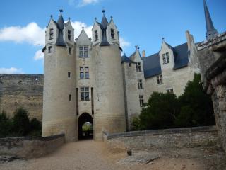 """Gite Oenotourisme """" Loire Anjou"""" ; -Val de Loire  -SAUMUR ANGERS"""