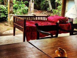 Cabana under the trees