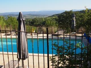 Provence Ombre Doree  vrij uitzicht op wijnvelden., Bonnieux