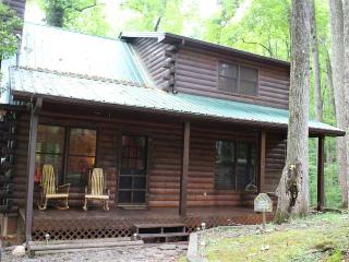 Ellijay Mountain Log Cabin: 2BR/2BA, Sleeps 4