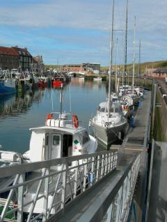 Yachts in Eyemouth Harbour