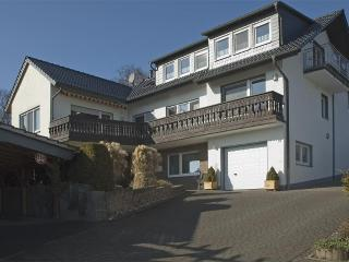 LLAG Luxury Vacation Apartment in Warstein - 106013 sqft, Infrared cabin, WiFi (# 2540)
