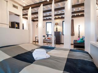 Stylish renovated flat in Lucca city centre, AC and wi-fi