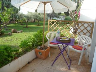 Two rooms apartment in Peñiscola, Castellon Province