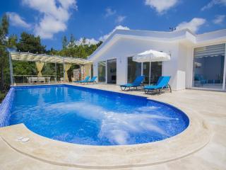 Luxury holiday villa in islamlar, sleeps 04 : 170, Islamlar