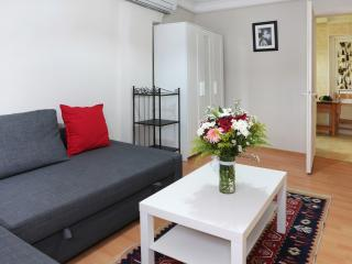 Sultanahmet -1 BD Aparment just near blue mosque, Estambul