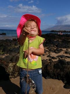 Digging for crabs across the street at Kamaole III beach!