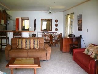 1 Bedroom Ocean View Condo with Resort Amenities, Playa Flamingo