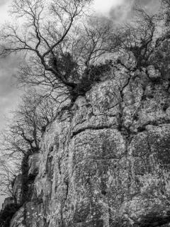 limestone outcrops along the waking path by river