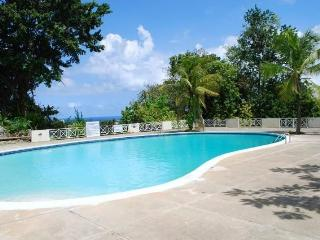Columbus Heights  Ocho Rios Jamaica Apartment 24 E