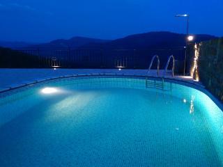 Istrian pool villa Ana, Buzet