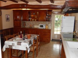Cuisine indépendante - plaque à induction, four électrique, lave vaisselle, lave linge, congélateur.