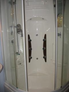 Fully enclosed shower with massage jets