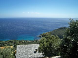 La Mireille - Haute Corse, Brando