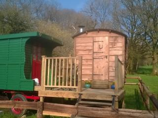 Alice Street Farm Shepherds Hut, Frome