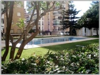 The pool area, where the gardens are totally enclosed, so it's very  safe for children.
