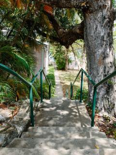 Path down to the beach.