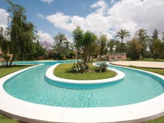 Beautiful Riad in the Marrakech Palm Grove