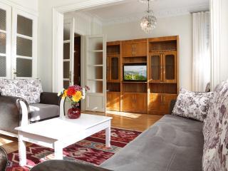 Unbeatable Location,Space&Comfort-2BR Splended Apt, Estambul
