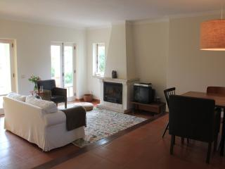 South facing living room with french windows that give access to garden and terrace with fireplace