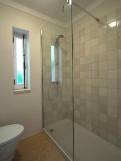 Renovated bathroom with handmade Viuva Lamego tiles, with walk-in shower, toilet and sink.