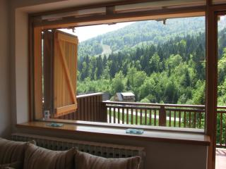 Apartment Mija  with mountain view on Bjelasnica