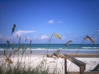 Private setting in New Smyrna Beach!