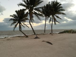 Beachfront Paradise in San Crisanto, Telchac Puerto