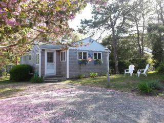 Classic, Quiet,  Private Dennisport Cottage, Dennis Port