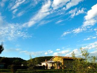 Gorgeous Chianti Vineyards, Private Home, Views!, Siena
