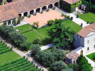 A perfect vacation for wine lovers, Padua