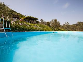 Rustic Chianti apartment rental, sleeps 5, features private garden and shared pool