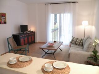 Old town Marbella Apartment