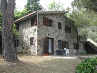 the Gecko  apartment, Corniglia