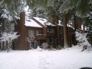 #38 Snowater Condo -A great mountain retreat!, Glacier