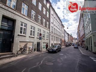 Large Apartment In The Center of Copenhagen - 102, Copenhague