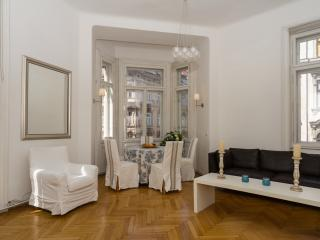 Luxury Apartment Alsergrund, Viena
