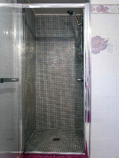 L'espace douche dans la salle de bain