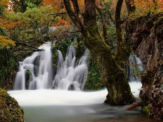 NP PLITVICE, Big wooden OAZA MIRA - on a little hill,2km from biggest waterfalls