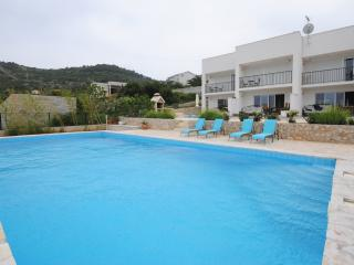Duplex apartment with heated pool in Vis