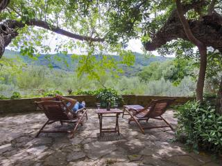 Charming apartment in a traditional country house, Paciano