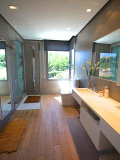 Master bathroom w/massage shower
