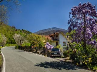 Chiavari: Casa Marvi, Mezzanego