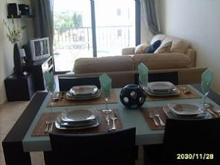 Large comfortable apartment with balcony sheer luxury fot that Perfect stay