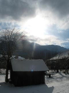 cabane du jardin et hiver