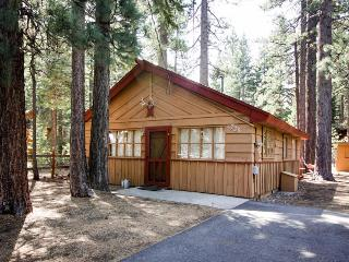 Warm, family-friendly mountain cabin with large yard, near trails & skiing!