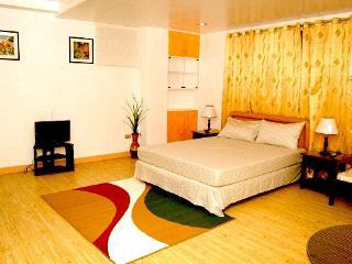 SPACIOUS , BEAUTIFUL CONDO  STUDIO ROOMS  FOR RENT, Cebu City