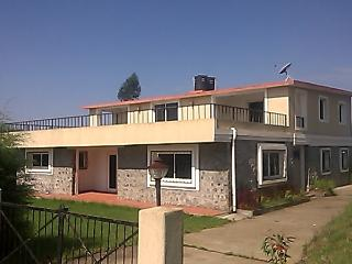 A serene retreat amidst nature,Ooty